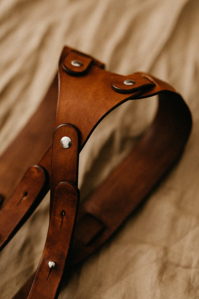 Dual leather camera strap