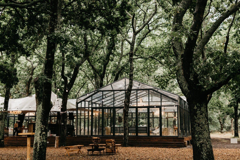 John & Susanne's Forest Wedding 128