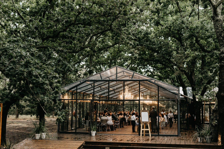 John & Susanne's Forest Wedding 164